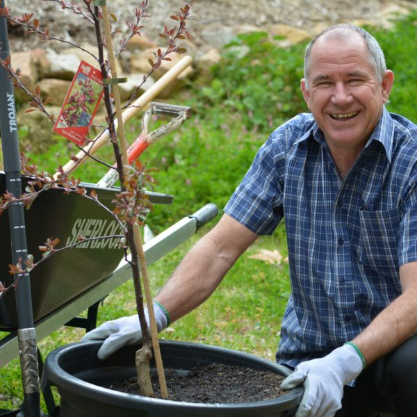 Planting trees - gardening work done for a not for profit organisation
