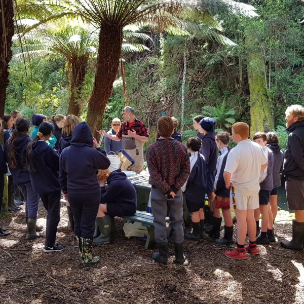National WaterbugBlitz! activities with Apollo Bay P12 students, as part of the Waterwatch program.