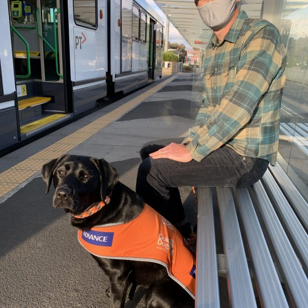 Volunteer at train station exposing pup to environment