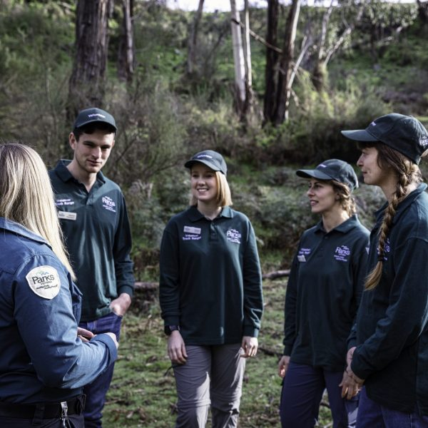 Volunteer Track Rangers receiving a briefing from the local Ranger